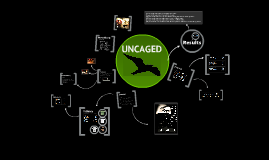 Copy of Uncaged