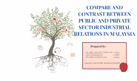 COMPARE AND CONTRAST BETWEEN PUBLIC AND PRIVATE SECTOR IN IN