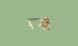 CAPITAL PUNISHMENTS - HISTORICAL TRACE