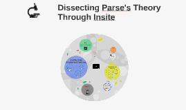 Dissecting Parse's Theory Through with Insite