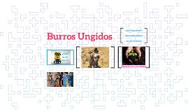 Burro Ungido