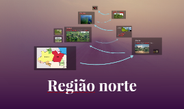 Copy of Região norte