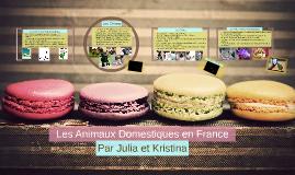 Copy of Les Animaux Domestiques en France