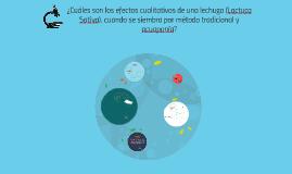 Copy of ¿Cuáles son los efectos cualitativos de una lechuga (Lactuca
