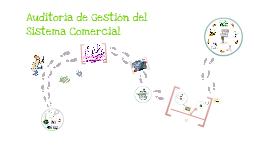 Copy of Copy of Auditoría de Gestión del Sistema Comercial