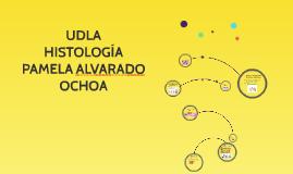 Copy of UDLA