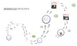 TIPOS DE DISTRIBUCION EN PLANTA