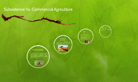 subsistence Vs. Commercial Ag
