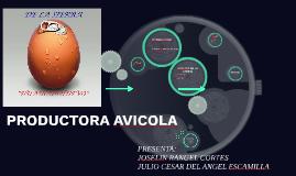 Copy of PRODUCTORA AVICOLA