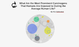 What Are the Most Prominent Carcinogens That Humans Are Exposed to During the Average Human Life?