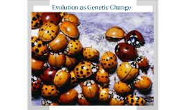 Biology Chapter 16 Section 2 Evolution as Genetic Change