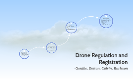 Copy of Drone Reg