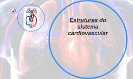 Estruturas do sistema cardiovascular