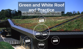 Green and White Roof and Practice