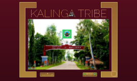 AKK report