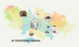 mi experiencia chilena