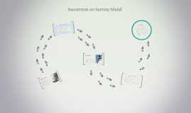 Copy of Succession on Surtsey Island