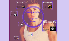 Copy of Justin Bieber cell analogy
