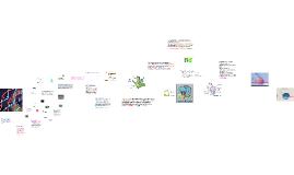 Генетични процеси в клетката.Репликация, Транскрипция и Транслация