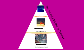 The Box Jellyfish Energy Pyramid