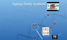 Copy of human body systems