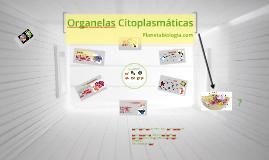 Organelas Citoplasmáticas - Resumo