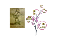 Copy of Once Under the Cherry Blossom Tree