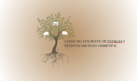 CONSUMO EFICIENTE DE ENERGIA Y RESPONSABILIDAD AMBIENTAL