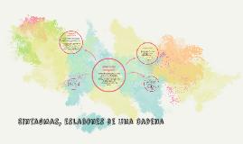 Copy of Sintagmas, eslabones de una cadena