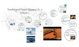 Tundra and Desert Biomes Ch. 5 Lesson 5