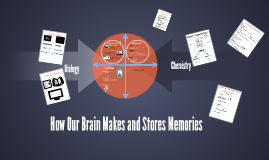 Copy of How Our Brain Makes and Stores Memories
