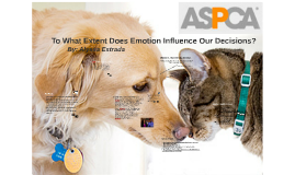 To What Extent Does Emotion Influence Our Decisions
