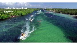 Ambientes marinos: