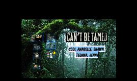 Codi, Anabelle, Shawn, Teonna, Jenny