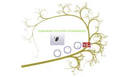 organizacion burocratica divisionalizada