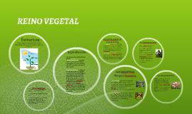 Copy of Reino Vegetal: