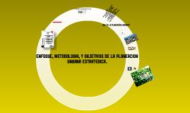 Copy of enfoque, metodologia y objetivos