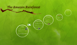 Copy of The Amazon Rainforest