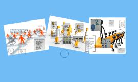 Copy of Understanding and Designing Organizat
