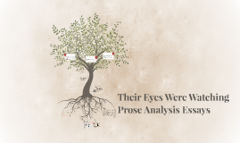 Their Eyes Were Watching  Prose Analysis Essays