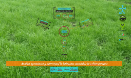 Análisis Agronómico y Nutricional