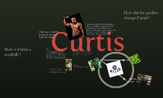 Curtis(: