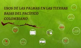 Copy of USOS DE LAS PALMAS EN LAS TIERRAS BAJAS DEL