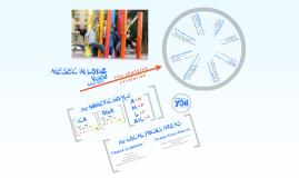 Vision of AIESEC Lodz 2009/2010