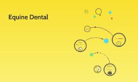Equine Dental
