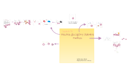Copy of Insulina, glucagón y diabetes mellitud
