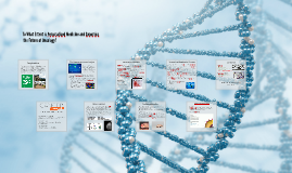 Copy of To What Extent is Personalised Medicine and Genomics, the Fu