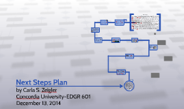 Next Steps Plan