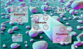 Rickettsias, Chlamydias y Mycoplasmas