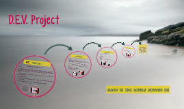 D.E.V. Project